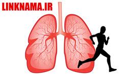 ورزش و دستگاه تنفسی (ریه)