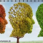 روش جدید تشخیص آلزایمر